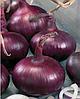 Семена лука Корсар 500 грамм Nasko