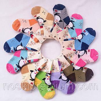 Носки детские махровые хлопок травка Роза, 3-4 года, ассорти, 358823