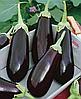 Семена баклажана Надир 1000 семян Nasko
