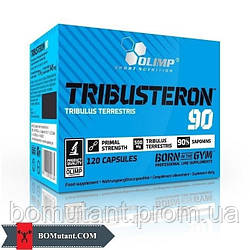 Tribusteron 90 120 капсул OLIMP