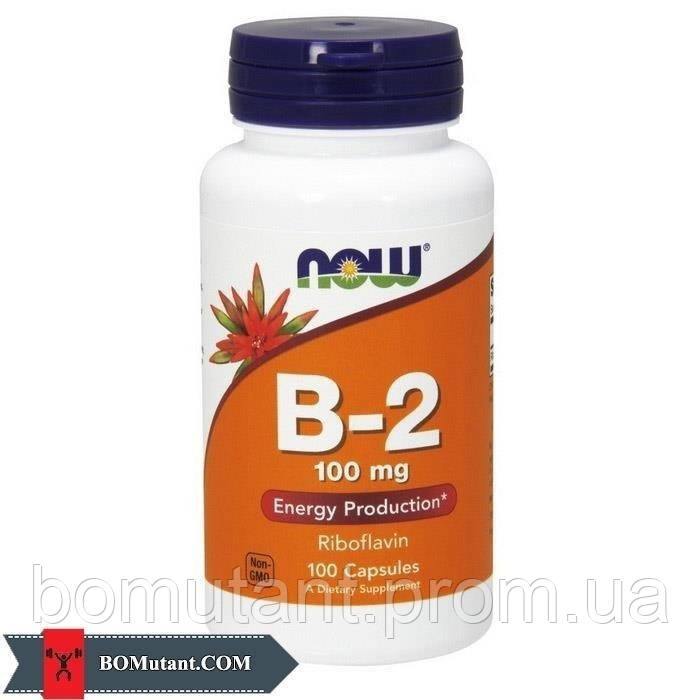 B-2 100 mg 100 капсул NOW