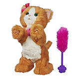 Интерактивная кошечка Дейзи от FurReal Friends Hasbro  / FurReal Friends Daisy Plays-With-Me Kitty Toy, фото 2