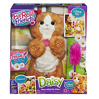 Интерактивная кошечка Дейзи от FurReal Friends Hasbro  / FurReal Friends Daisy Plays-With-Me Kitty Toy, фото 1
