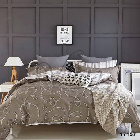 17157 Полуторное постельное белье ранфорс Viluta, фото 2