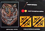Мозаика из пайеток Кот пушистый (Пм-01-18), фото 7