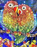 Мозаика из пайеток 'Попугаи' (Пм-01-17), фото 5