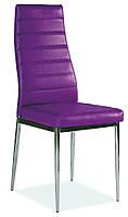 Стул-кресло для кухни Signal H-261 (Signal)