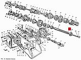 Вал внутренний ЮМЗ-6, Д-65   36-1701072, фото 5