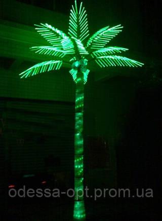 Электрическое дерево пальма