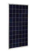 Солнечная панель Risen RSM60-6-275P, 275 Вт, Poly Tier1, фото 1