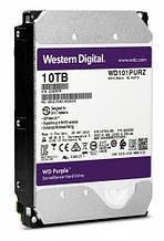 Винчестер WD Purple [WD101PURZ]