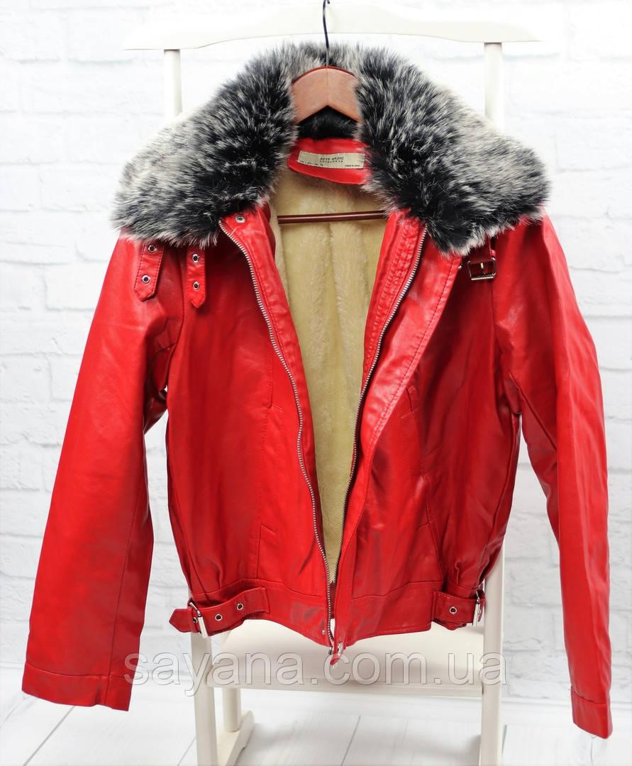 Женская куртка на молнии в расцветках. БР-8-1018
