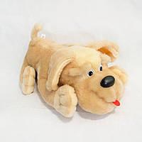 Мягкая игрушка Собака Пуфик мини 31см (203)