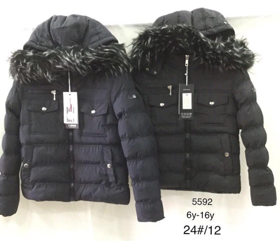 Куртка утепленная для девочек Nature оптом , 6-16 лет.
