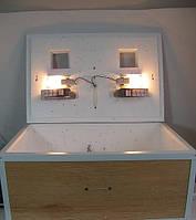 Инкубатор Курочка Ряба ИБ-60 с автоматическим переворотом яиц , фото 1