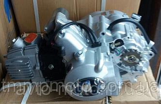 Двигатель 110см3 механика Alfa Lux, фото 3