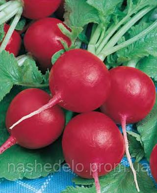Семена редиса Карбона 50 грамм Nasko