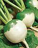 Семена редьки маргеланской Тэфи 25 грамм Nasko