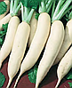 Семена редьки Гуливер 25 грамм Nasko