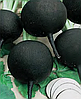 Семена редьки черной Дуэнья 50 грамм Nasko