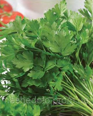 Семена петрушки листовой Господыня 25 грамм Nasko
