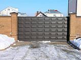 Відкатні ворота 3000х2000 заповнення фільонка, фото 2