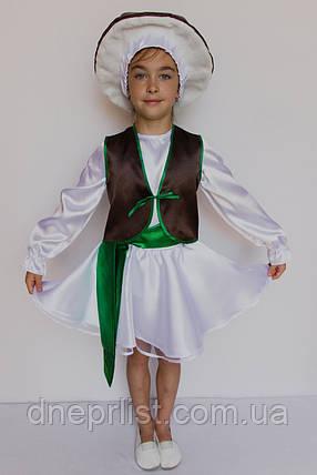 Костюм «Гриб Боровик (девочка)» 5 предметов (95-120 см), фото 2