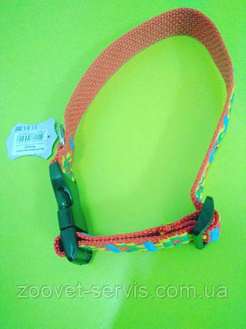 Ошейник капроновыйдля собак Вышиванка ширина 1.6, фото 2