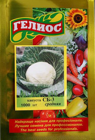 Семена капусты белокачанной СБ-3 (Имп.) 1000 шт., фото 2