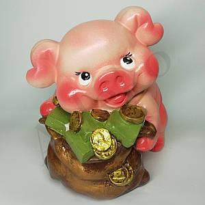 Свинья копилка My piggy 24 см