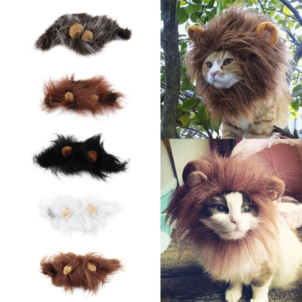 Львиная грива для вашего питомца! Костюм для кота!