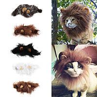 Львиная грива для вашего питомца! Костюм для кота!, фото 1
