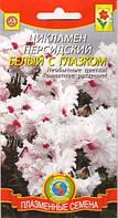 Семена цветов  Цикламен Рококо Белый с глазком  белые (Плазменные семена)