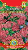 Семена цветов  Тысячелистник Вишнёвая королева 0,05 г красные (Плазменные семена)