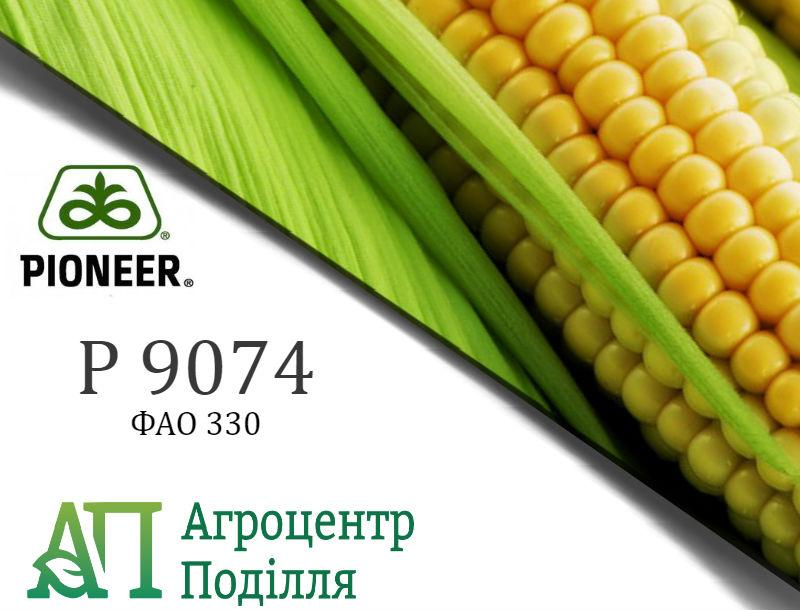 Семена кукурузы P9074/ П9074 (ФАО 330) Пионер
