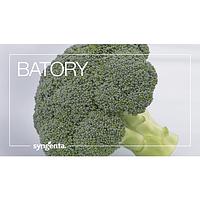 Капуста броколі Баторі   2,500н. Syngenta
