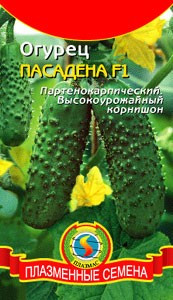 Семена огурцов Огурец Пасадена F1 10 штук  (Плазменные семена)