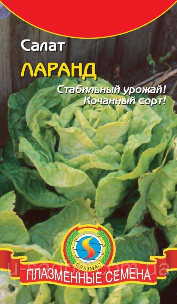 Семена салата Салат Ларанд   (Плазменные семена)