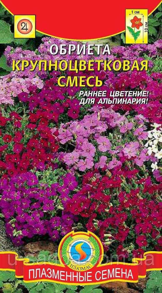 Семена цветов  Обриета Крупноцветковая смесь 0,1 г смесь (Плазменные семена)