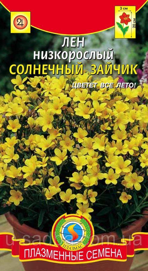 Семена цветов  Лен многолетний Солнечный зайчик 0,03 г желтые (Плазменные семена)