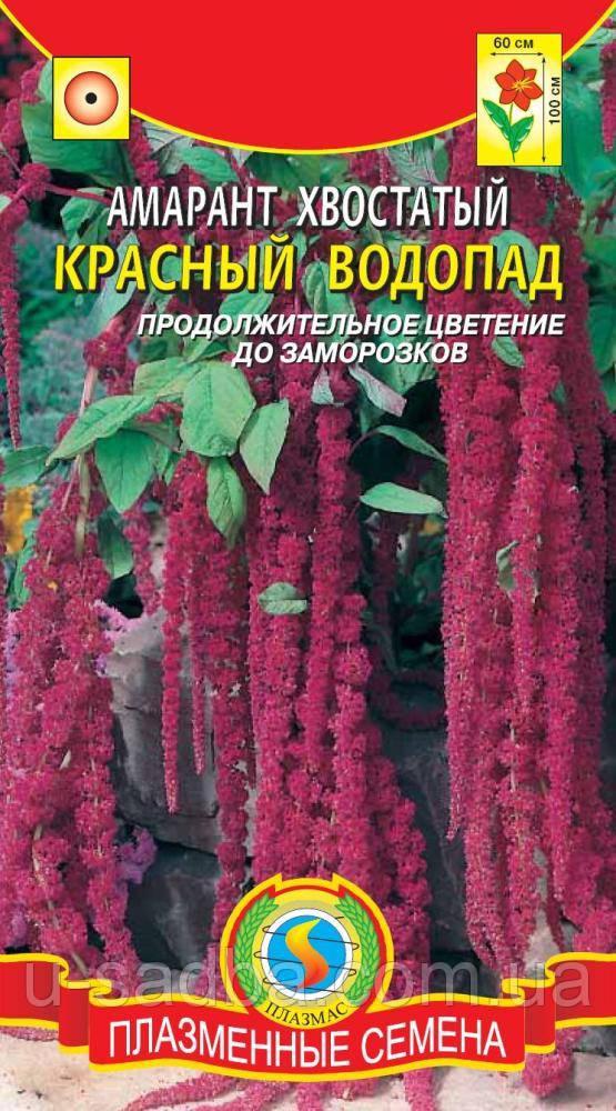 Семена цветов  Амарант Красный водопад 0,9 г красные (Плазменные семена)