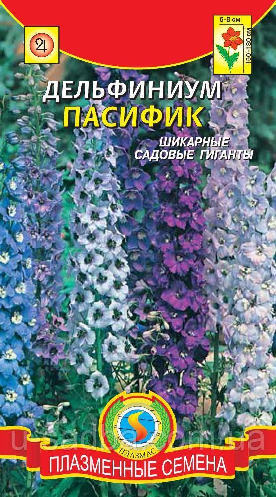 Семена цветов  Дельфиниум Пацифик 0,1 г лиловые (Плазменные семена)