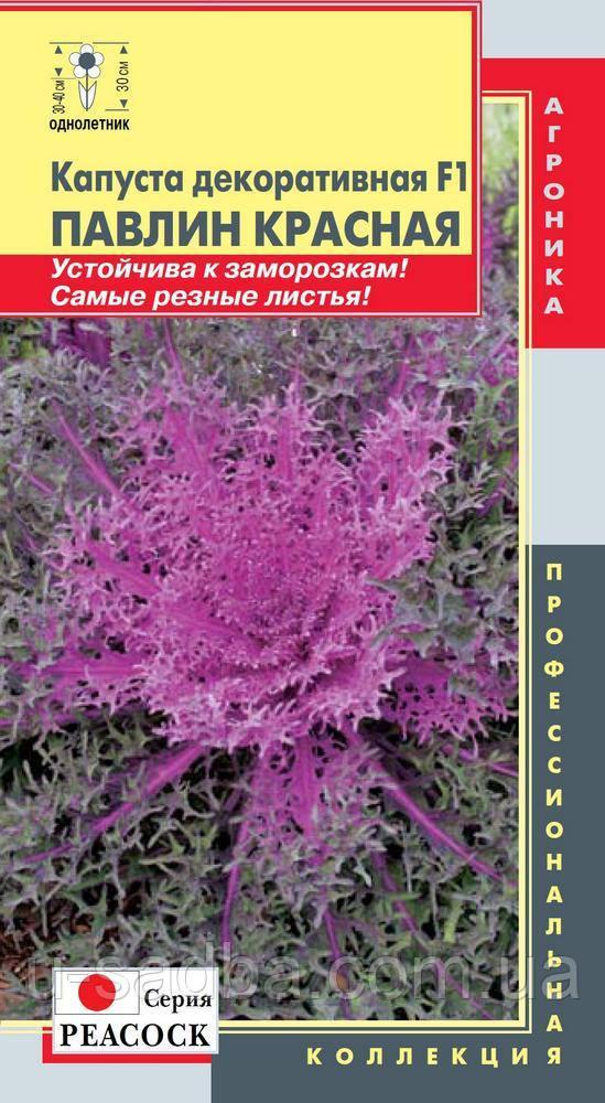 Семена цветов  Капуста декоративная F1 Павлин Красная 7 штук не цветущие (Плазменные семена)
