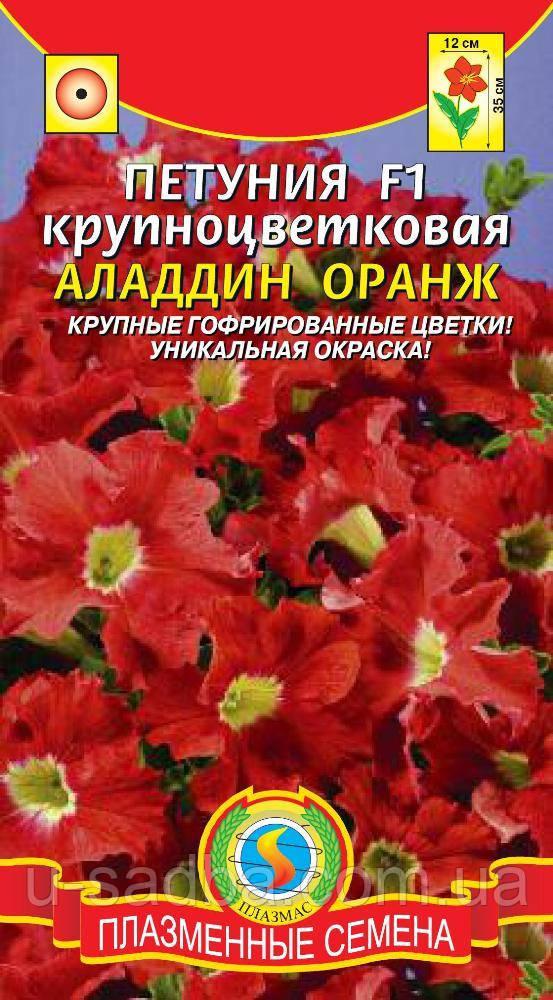 Семена цветов  Петуния крупноцветковая Аладдин Оранж 10 драже в пробирке оранжевые (Плазменные семена)