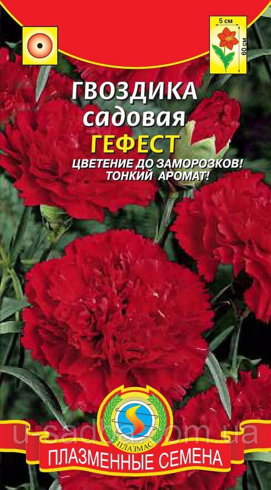 Семена цветов  Гвоздика садовая Гефест 0,1 г красные (Плазменные семена)