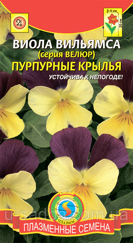 Семена цветов  Виола вильямса Пурпурные крылья 10 штук смесь (Плазменные семена)