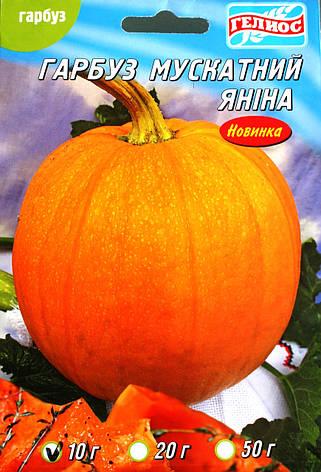 Семена тыквы Янина 10 г, фото 2