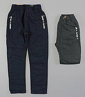 {есть:104,98}  Бесплатная доставка Котоновые брюки на флисе для мальчиков Glass Bear ,98-128 рр.