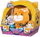 Интерактивная игрушка Котенок моей мечты Падин Little Live Pets Puddin My Dream Kitten Moose, фото 2