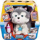 Интерактивная игрушка Щенок моей мечты Фрости Little Live Pets Frosty My Dream Puppy Moose, фото 2